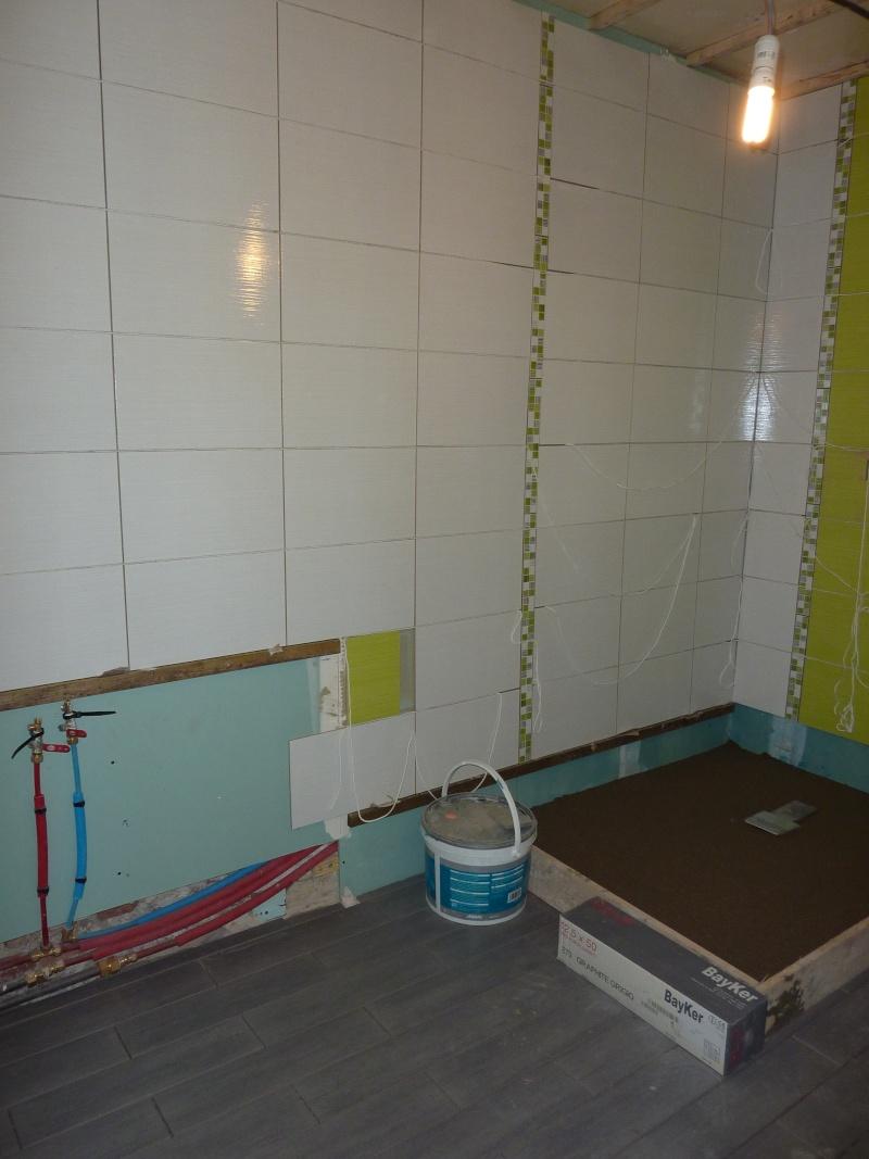 La salle de bain de Cha. Travaux en cours photos P 4et5 - Page 5 P1040219