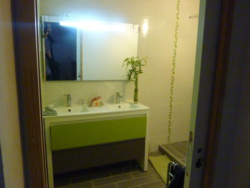 La salle de bain de Cha. Travaux en cours photos P 4et5 - Page 5 P1040313