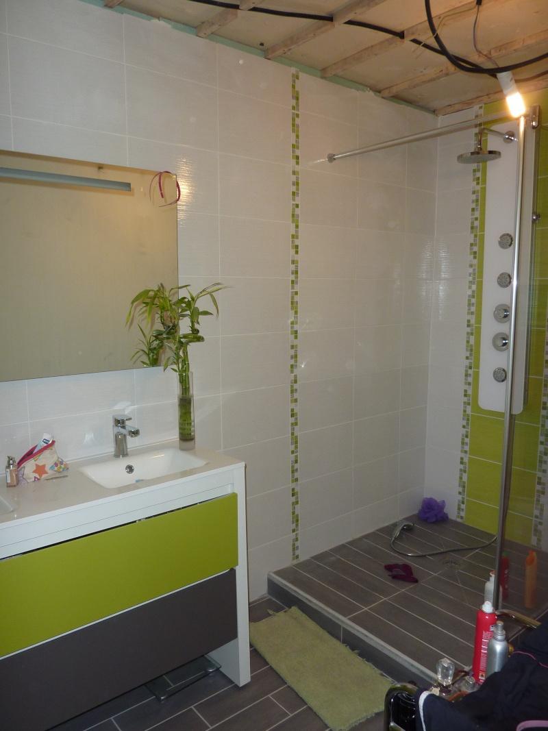 La salle de bain de Cha. Travaux en cours photos P 4et5 - Page 5 P1040315