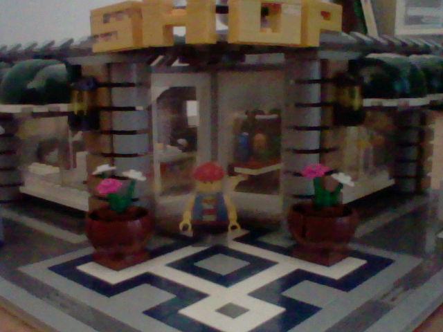 Ma très (très très) grande collection de LEGO ! (+ nouvelles photos !) Hni_0017