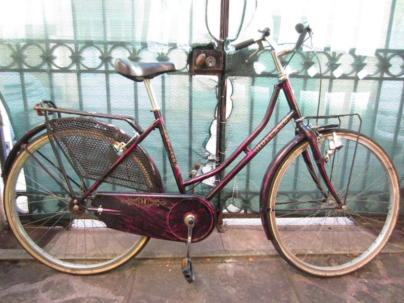 "Vélo pour dame ""Holland"" Img_4653"