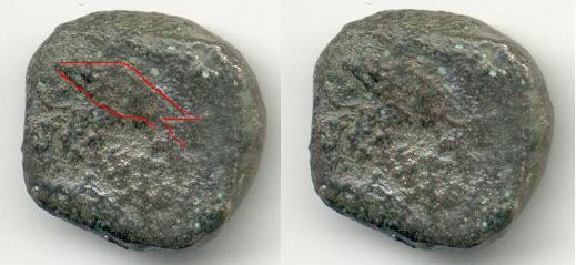 Semis de Cunbaria Atun10