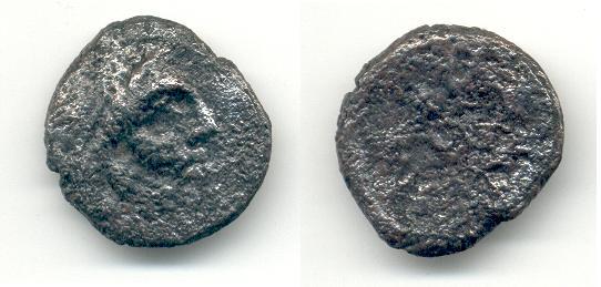 Semis de Iptuci Zeus10