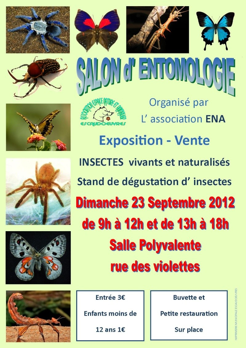 salon d'entomologie le 23 septembre 2012 Escaudoeuvres Salon_10