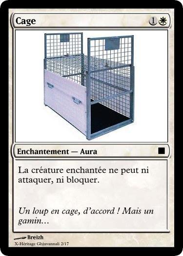 MAGIC XH Cage12
