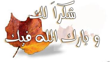 اللغة العربية ظلمت المرأة Bcb78a18