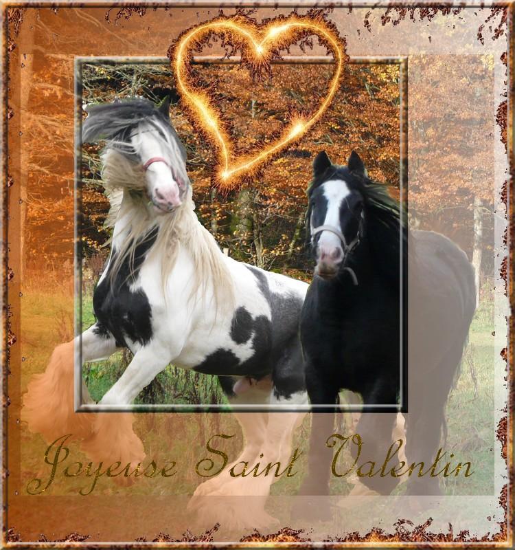 Votez pour le plus beau montage de St Valentin! St_val10