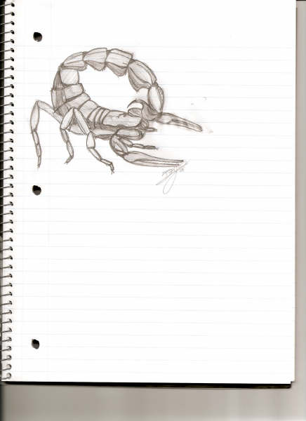 ScorpionForum Art Contest Scorpi10