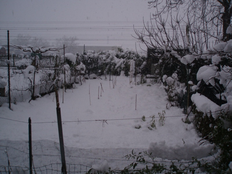 Nevicata Chieti Scalo 15-16 dicembre 2007 Neve_113