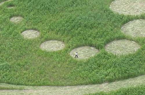 Primer y gigantesco cropcircle en Corea del Sur. Con fotos Korea_10
