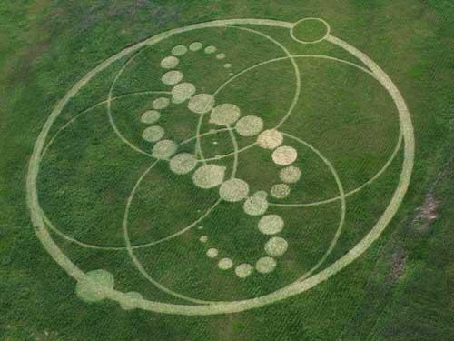 Primer y gigantesco cropcircle en Corea del Sur. Con fotos Korea_11