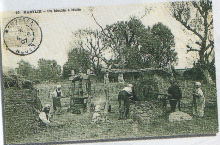 cartes postales d'algerie Img00426