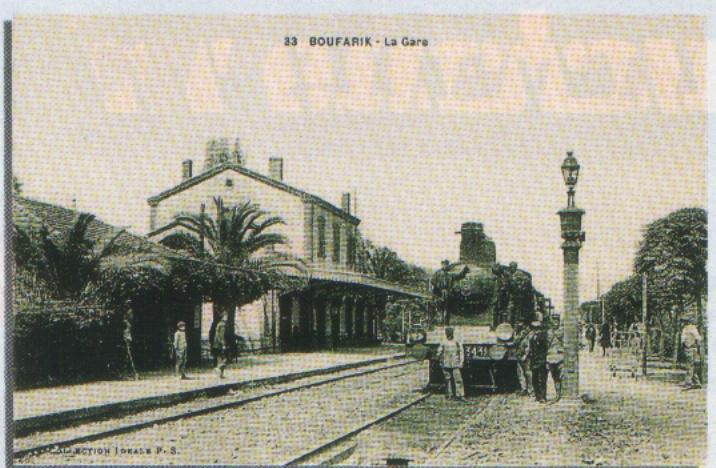 cartes postales d'algerie Img00427