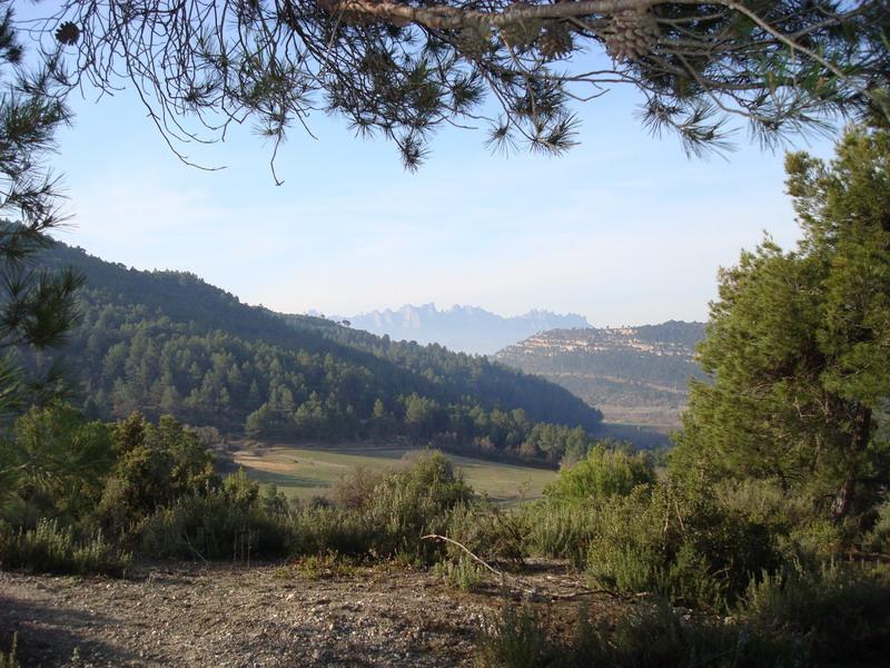 Dissabte 08-03-08 El Puig de la Balma Dsc02128