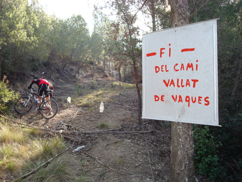 Dissabte 08-03-08 El Puig de la Balma Dsc02129
