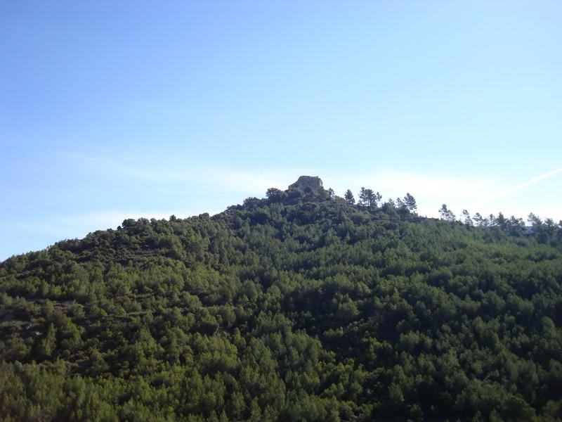 Dissabte 08-03-08 El Puig de la Balma Dsc02138
