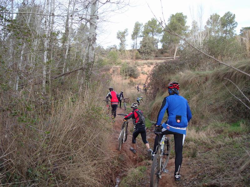 Dissabte 16-03-2008 Per les Torres de Fals Dsc02337