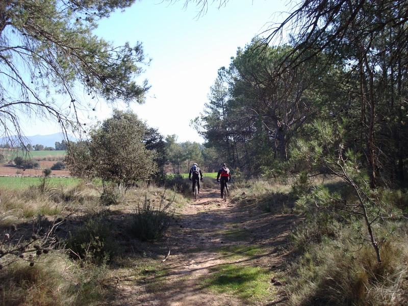 Dijous 20-03-2008  Pel poblat ibèric del Cogulló Dsc02444