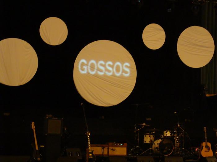 Divendres 04-04-2008 Gossos a l'Auditori Gossos11