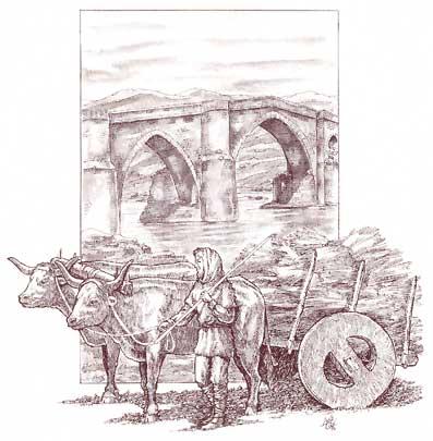 Medios de transporte - Dibujos Carro_11