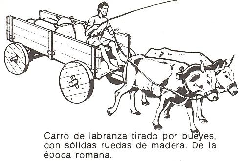 Medios de transporte - Dibujos Carro_31