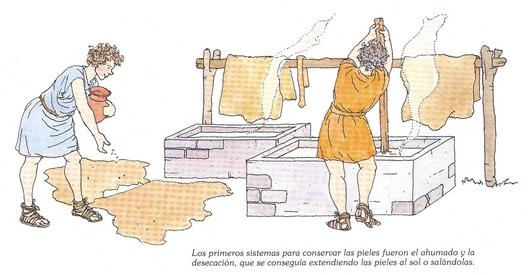 Curtido pieles - dibujos Curtid15