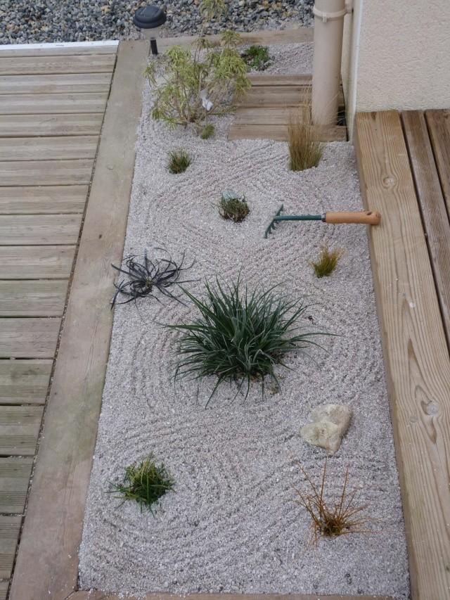 mon jardin zen P1070613