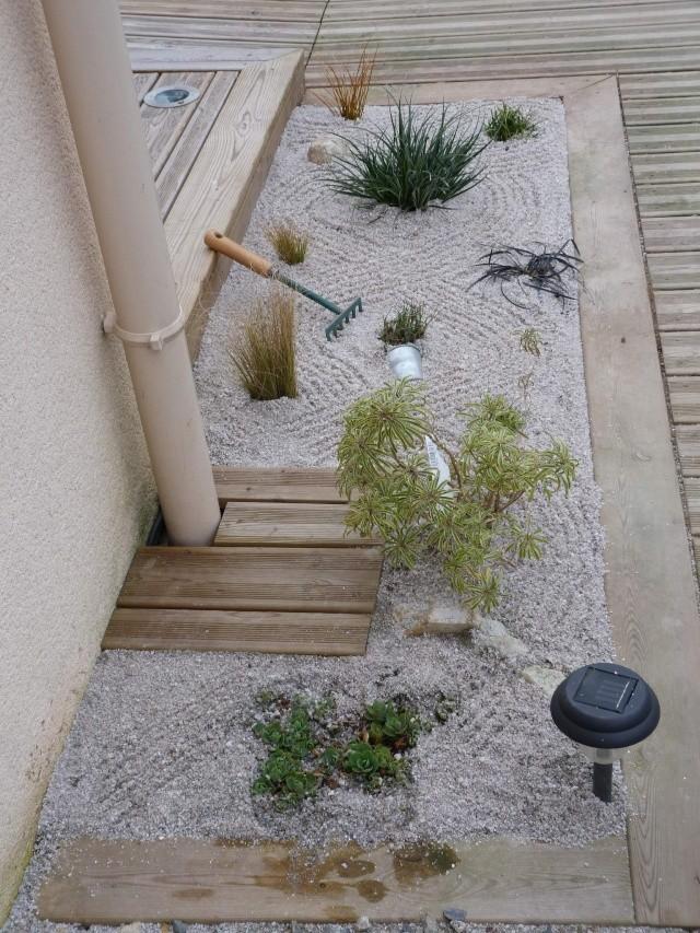 mon jardin zen P1070614