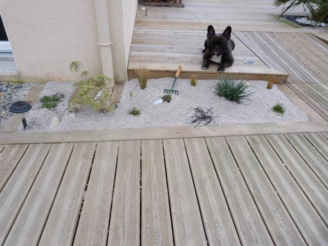 mon jardin zen P1070616