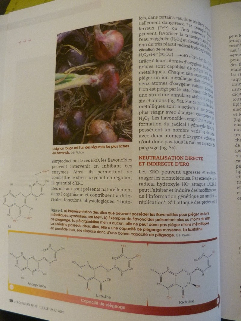 flavonoïdes et lutte contre le stress oxydant P1190958