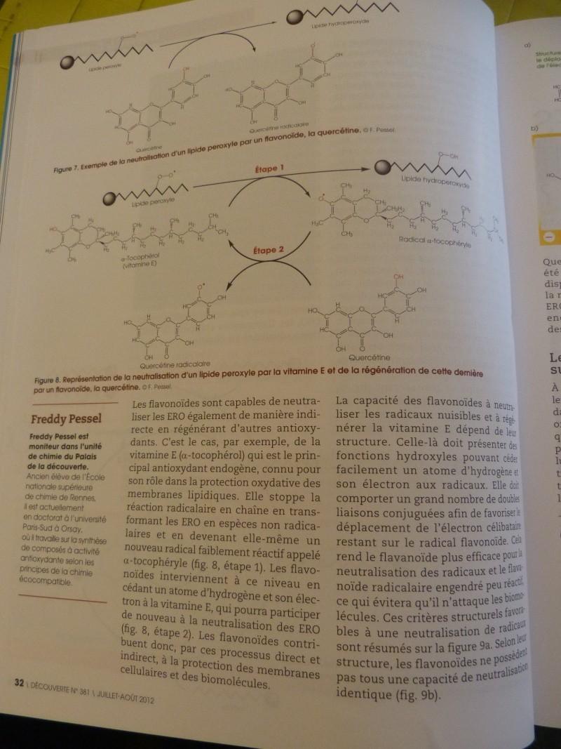 flavonoïdes et lutte contre le stress oxydant P1190960