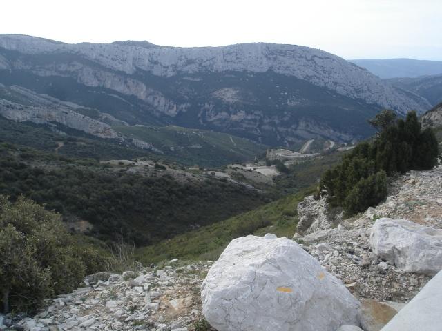 Mars 2008 - Gémenos Dsc07015