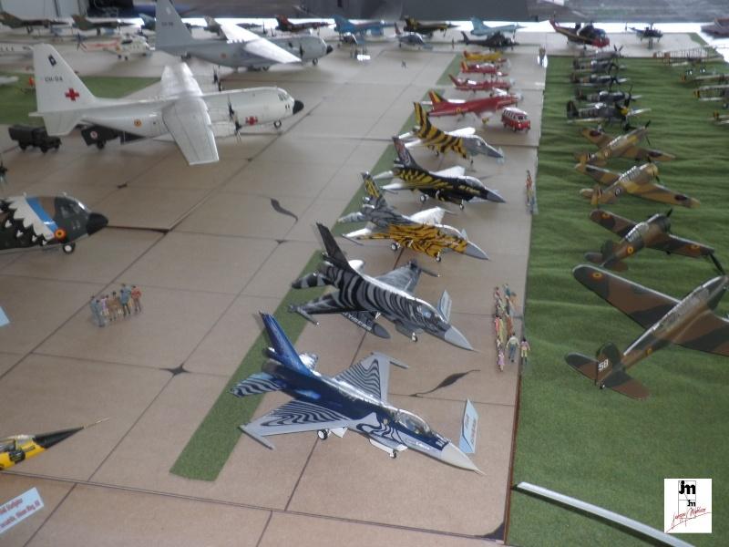Un Siècle d'aviation militaire belge au 1/48 Photo161