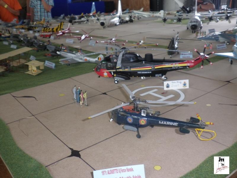 Un Siècle d'aviation militaire belge au 1/48 Photo165