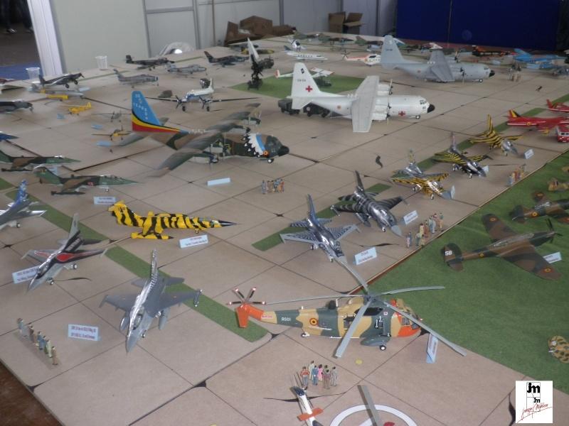 Un Siècle d'aviation militaire belge au 1/48 Photo170