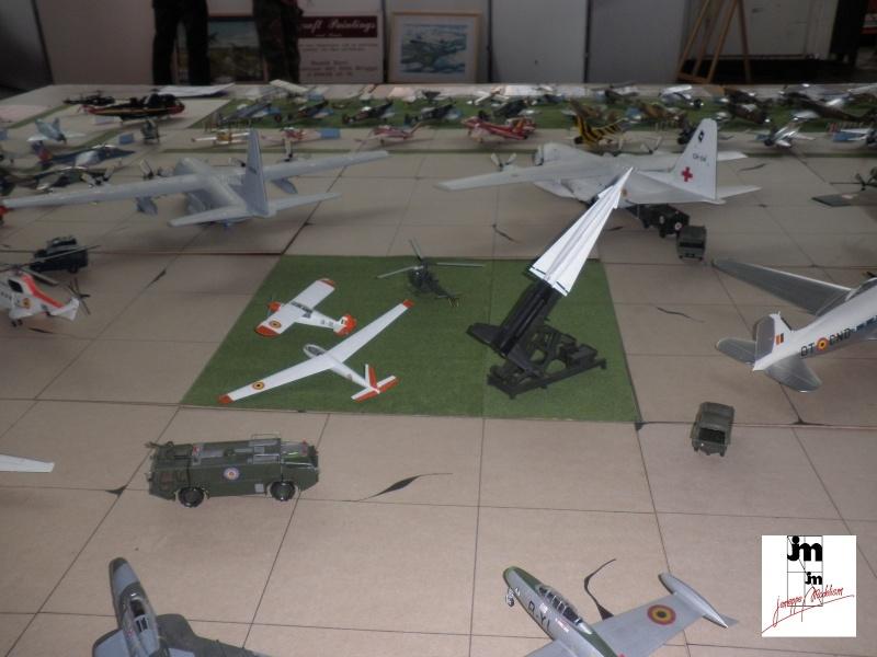 Un Siècle d'aviation militaire belge au 1/48 Photo173