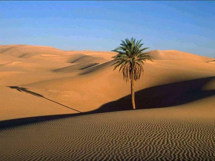 ...foto panorama alam.... Cid_0013