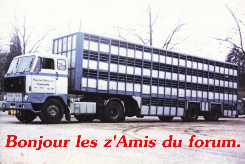 Des photos de camions bétaillères à moutons et d'autres photos de camions aussi conduit par Henry Elie . - Page 4 F_89_l11