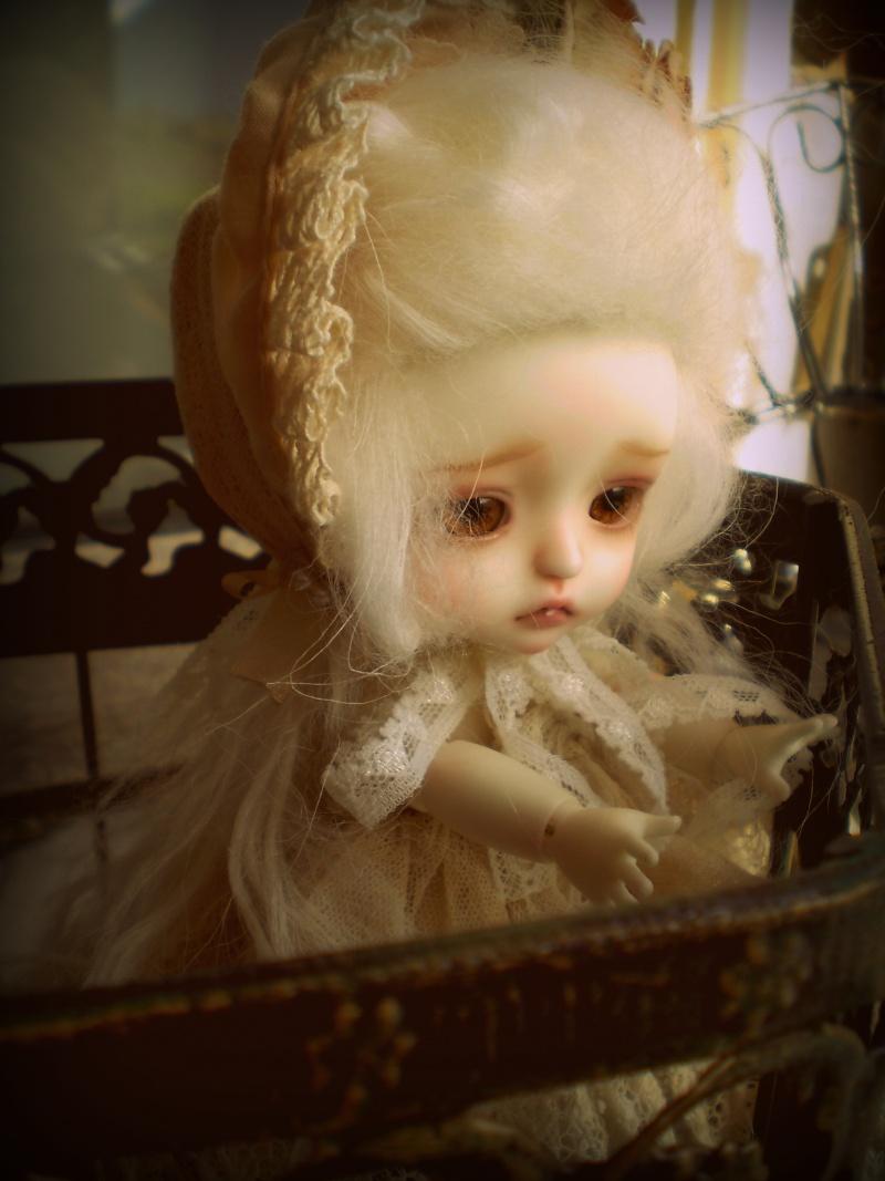 Acanthe [Lati Yellow Léa] P4020010