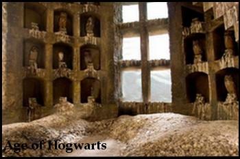 O Corujal de Hogwarts Coruja10