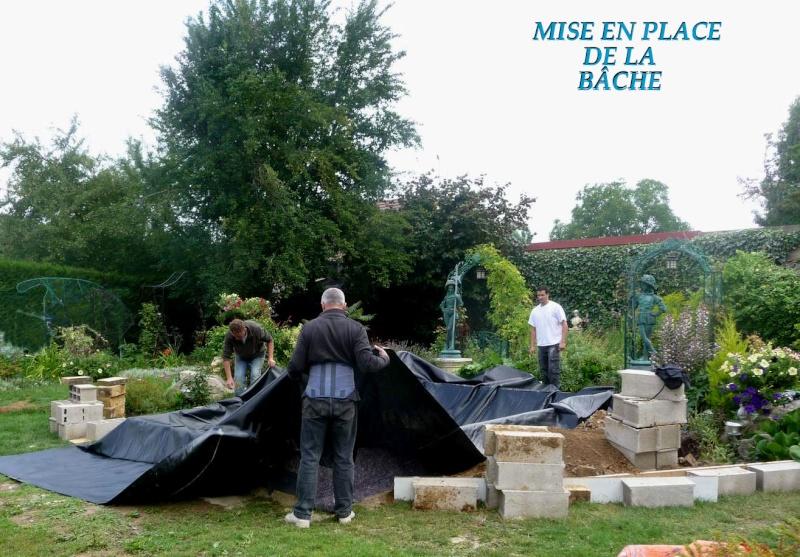UN PETIT BASSIN A LA FRANCAISE - Page 3 P_p10810