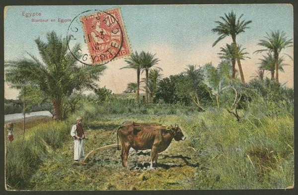 Ägypten   -   Alte Ansichtskarten   /   Menschen bei der Arbeit 00213