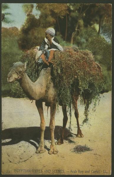 Ägypten  -   Szenen und Typen, Sitten und Gebräuche 04210