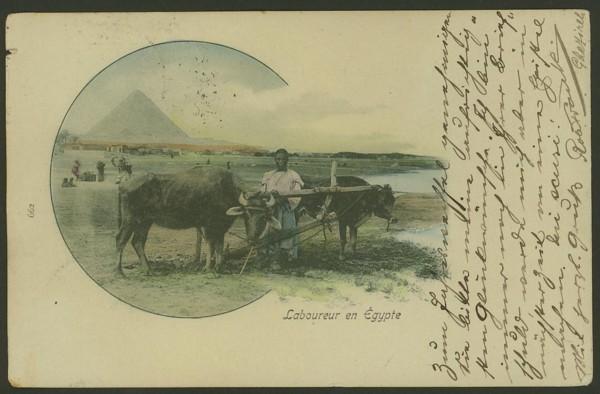 Ägypten   -   Alte Ansichtskarten   /   Menschen bei der Arbeit 06110
