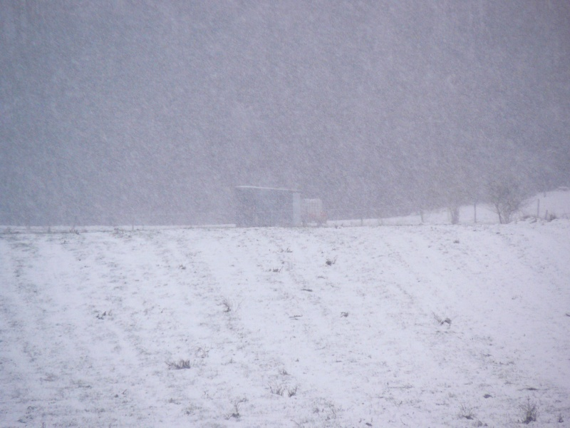 Galères de l'hiver P1080921