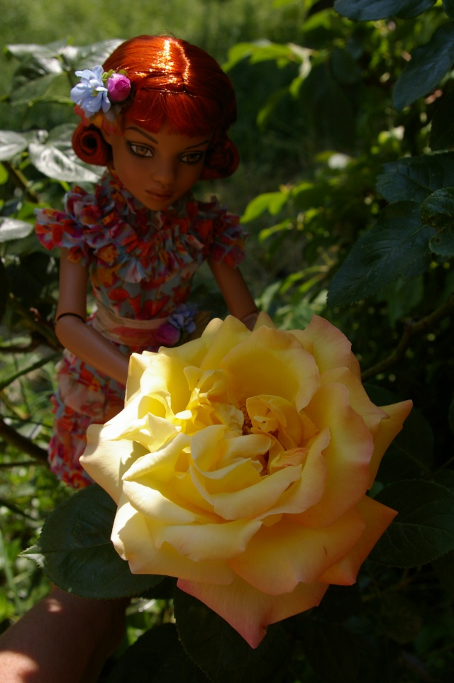 Lisette et ses copinettes découvrent  les fleurs de gigi Imgp2420