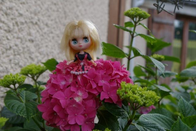 Lisette et ses copinettes découvrent  les fleurs de gigi Imgp2514