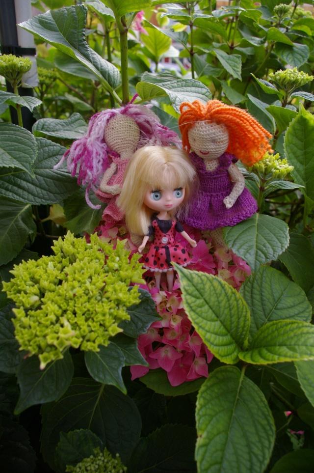 Lisette et ses copinettes découvrent  les fleurs de gigi Imgp2522