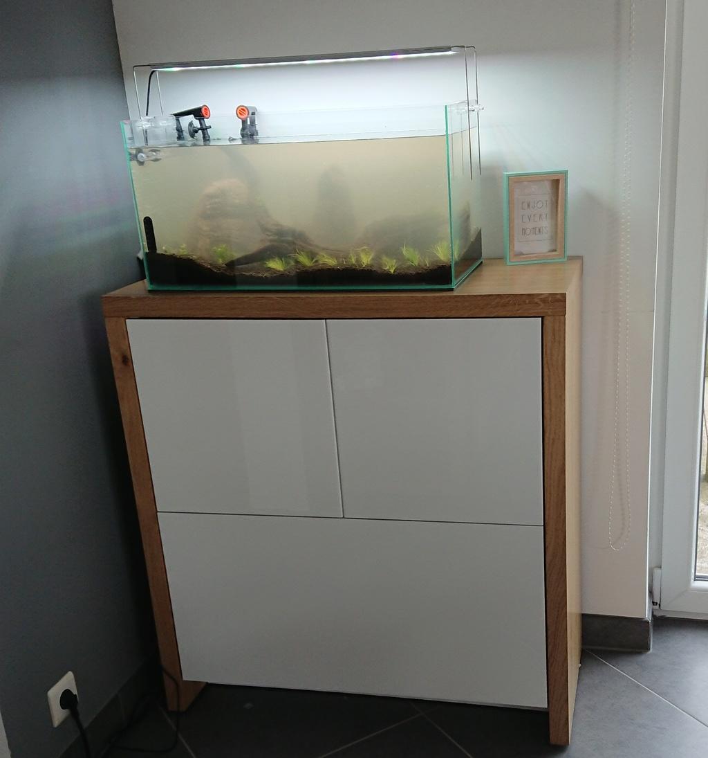 un nano bac de 50 L pour micro-poissons, crevettes escargots 010