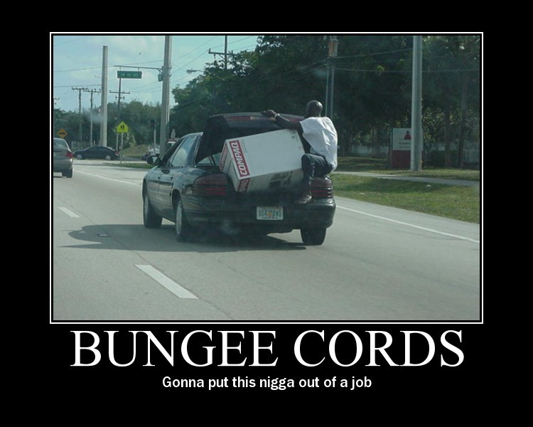 The Official Funny Picture Thread - Page 2 Bungee10